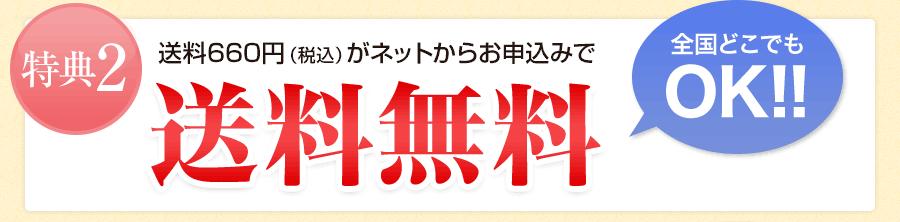 特典2 送料600円がネットからお申込みで送料無料 全国どこでもOK!!